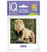 Умный малыш.  Животные жарких стран.  Набор карточек для детей.
