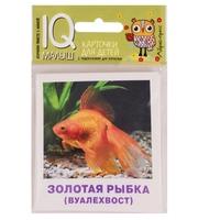 Умный малыш.  Аквариумные рыбы.  Набор карточек для детей.