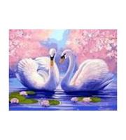 Вышивка крестом. 30*40см. Красивые лебеди XD2010  (полн. зап. канва без рис. )