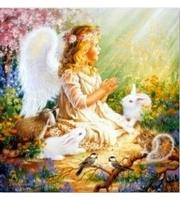 Набор для росписи по номерам. Ангелочек в саду с кроликом  (холст 30*40см, краски, кисти)